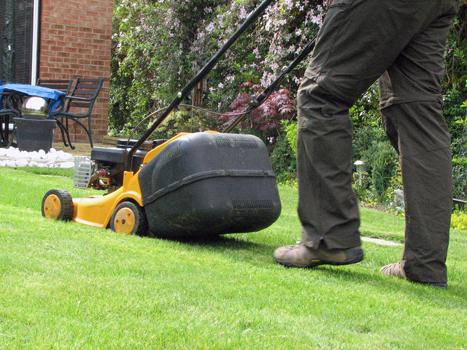 Bricolage jardinage for Cesu jardinage